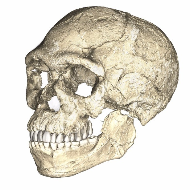 oldest-sapiens-10