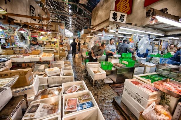 tsukiji-fish-market.jpg