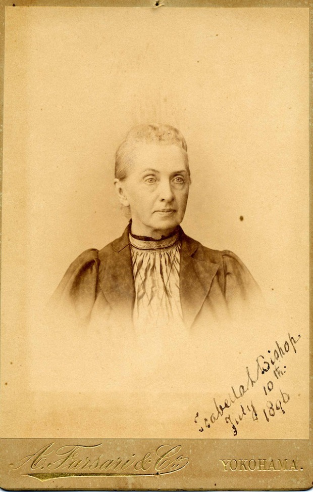 1896-bird.jpg