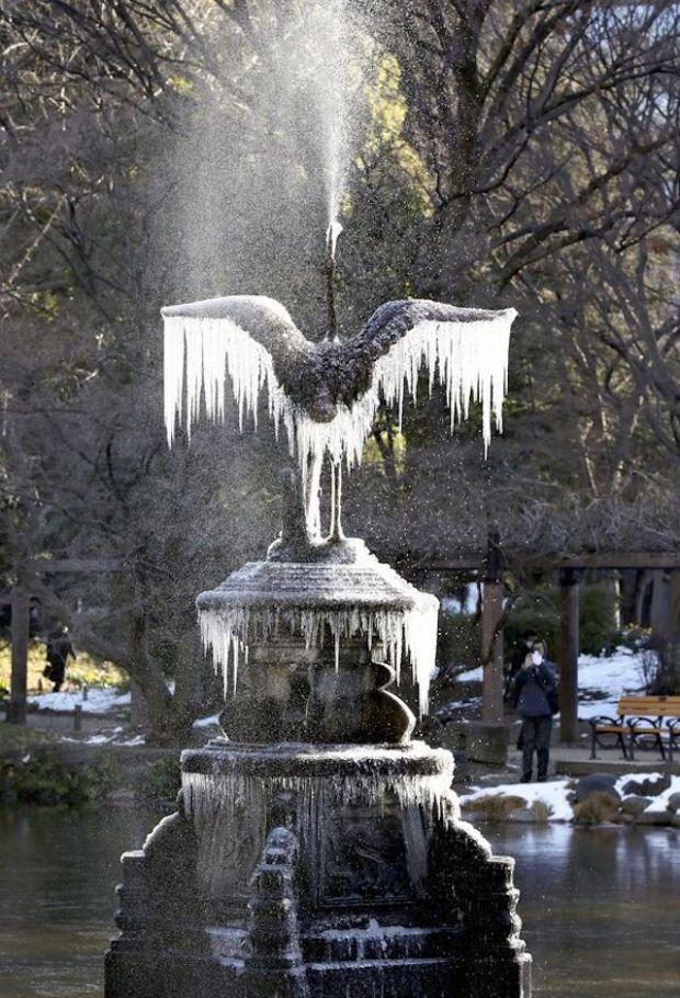 frozen-falcon-tokyo-jp.jpg