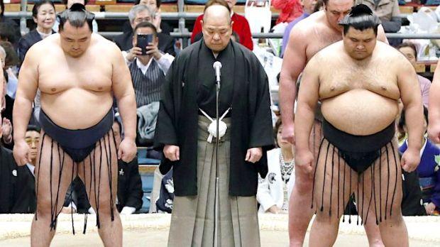 hakkaku-sumo-apology
