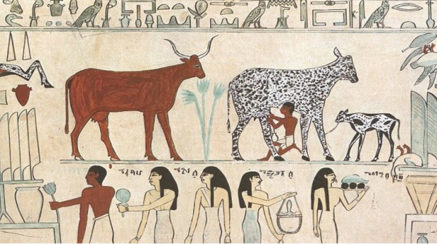 CHEESE IN ANCIENT EGYPT