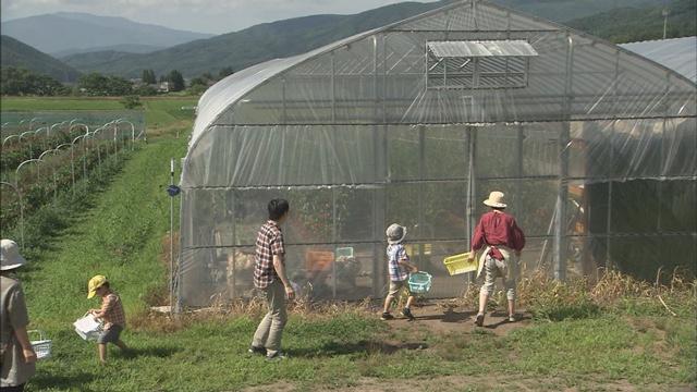 greenhousefarm.jpg